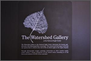 Works Of Rochester MN Photographer On Display In National Eagle Center Watershed Gallery
